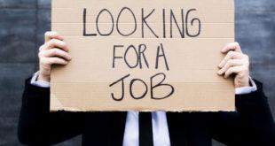 إعانات البطالة، بيانات التوظيف