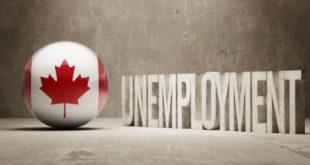 البطالة، كندا، العاطلين، العاملين