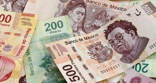 المكسيك ، اقتصاد المكسيك، الواردات الرأسمالية