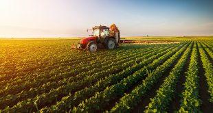 المنتجات الزراعية ، الصادرات الزراعية