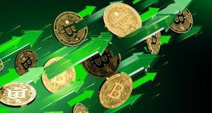 البيتكوين - العملات الرقمية - أسواق الفوركس